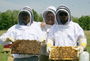 Three smiling apiarists holding honey combs