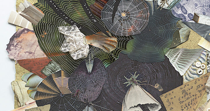 A swirling collage of images of spiderwebs, lines from ED poem 'A spider sews at night', images of books, and pieces of lace and string form an intricate web