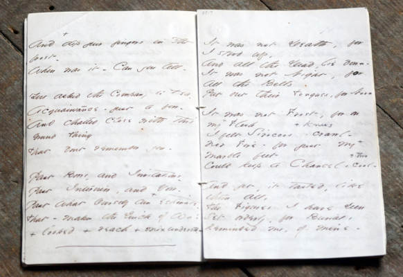 Manuscript of Emily's handwriting, not quite legible in photo
