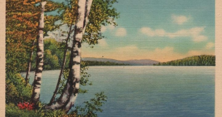 test postcard - a scene in Maine