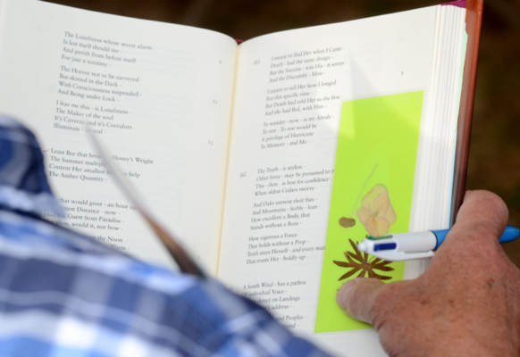 A book of Emily Dickinson's poetry being held open by someone reading