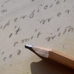 <b>Virtual Poetry Discussion Group</b></br>May 18 & May 28