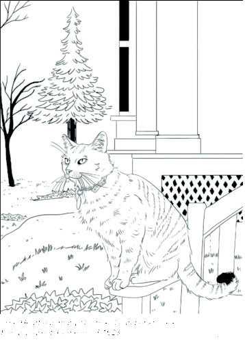 Downloadable coloring sheet of a cat with color on a the steps of a house.