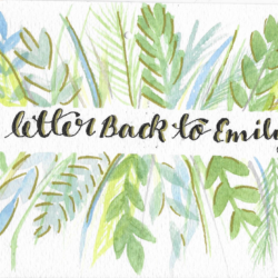 """Postcard face featuring a watercolor painting of various plants and the text """"a letter Back to Emily"""""""