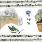Postcard face featuring a collage of images of plants and sheet music